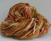 Mississippi Rhubarb - Handspun yarn (103 yards total) - Merino