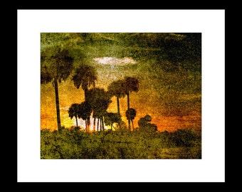 River Sunset in Florida 2 11X14 Fine Art Print
