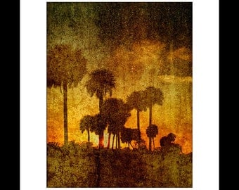 River Sunset in Florida 11X14 Fine Art Print