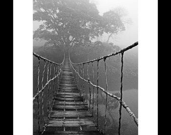 Journey Through the Jungle 20X30 Fine Art Print