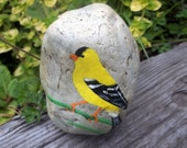 American Goldfinch Rock Art