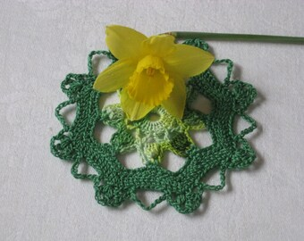 Green Doily with Variegated Center