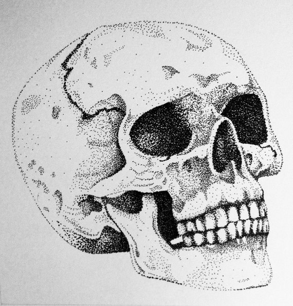 Items Similar To Skull Ink Drawing (Stipple) On Etsy