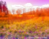 FOREVER.MEADOW...16x20 matted Vermont photograph dreamy soft trippy psychedelic pink puffy clouds stars flowers fields