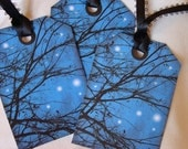 Starry Night Tags -  Set of 8 - Cobalt Blue Sky - Black Branch Tags -  Night Sky Tags - Nature Tags - Thank Yous  -  Starry Tags