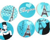 Tiffany Blue French Stickers Featuring Eiffel Tower Sophisticated Lady Cat Set Of 30