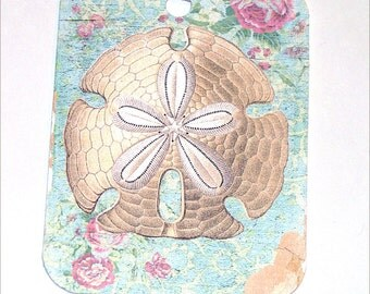 Sand Dollar Tags - Set of 4 - Iridescent Shell - Cottage Chic - Gift Tags - Thank Yous - Beach Tags - Ocean Tags - Seashell Tags
