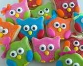 Colorful Owl Cookies-  3 Dozen for Lachelle in  hot pink, purple, lime, orange, and turquoise