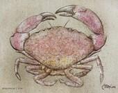 Stone Crab (8x10)