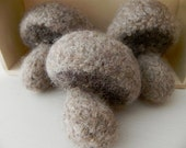 Play Mushrooms - Hand Knit & Felted Wool Toy