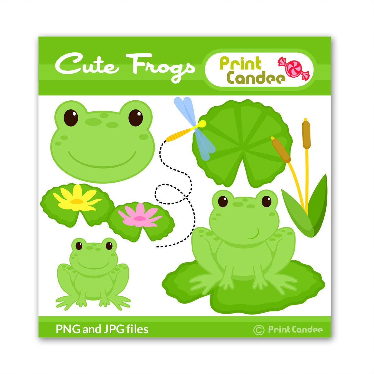 Frog Lily Pad Craft Frog Lily Pad Dragonfly
