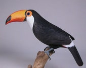 10 inches Toco Toucan Wood Carving Bird