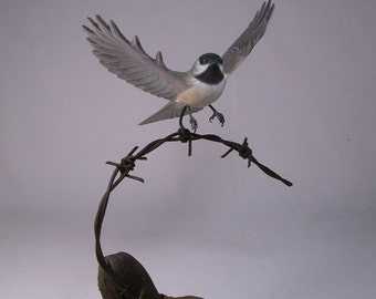 Open-winged Black-capped Chickadee