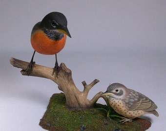 Life Size American Robin with a Baby Wood Carving