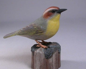 Rufous-capped Warbler Hand Carved and Hand Painted Wooden Bird