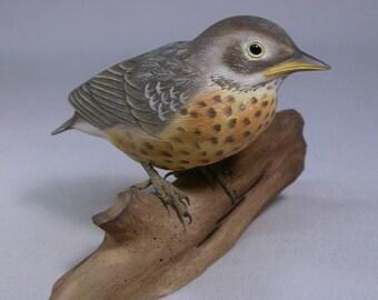 Baby American Robin Original Wood Carving