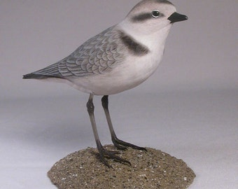 Snowy Plover Hand Carved and Hand Painted Water bird