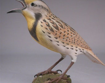 Life Size Eastern Meadowlark  Hand Carved Wooden Bird
