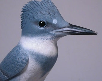 Carved Basswood Bird 9.25 inch Belted Kingfisher