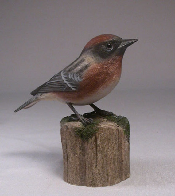 Bay-breasted Warbler Hand Carved Wood Bird