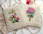 Antique Style Envelope Sachets covered in Vintage Pink Roses filled with French Lavender and Marie Antoinette on the back