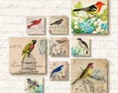 Birds of a Feather 1 inch Square Tiles, Digital Collage Sheet, Download and Print Jpeg Images