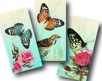 Paradise 1x2 inch Domino Tiles, Digital Collage Sheet, Download and Print Jpeg Images