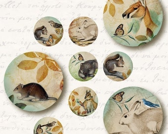 Forest 1 inch Circles, Digital Collage Sheet, Download and Print Jpeg Clip Art Images