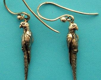 Parrot earrings in solid silver