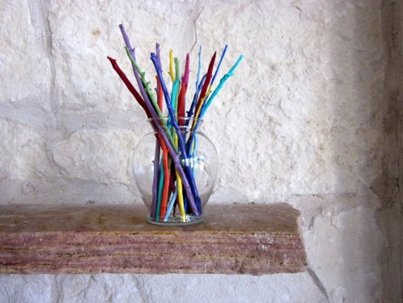 Colorful Home Decor, Branches in Vase