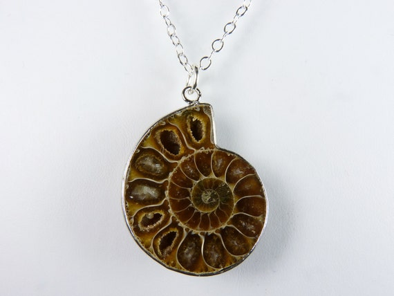Coffee and Caramel Ammonite Fossil Pendant Necklace with Druzy Crystals on a Sterling Silver Chain