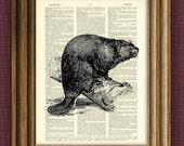 BEAVER beautifully upcycled vintage dictionary page book art print 8.5 x 11