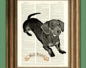 DACHSHUND wiener dog beautifully upcycled vintage dictionary page book art print PERSONALIZED