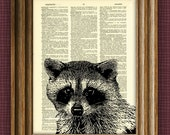 RACCOON beautifully upcycled vintage dictionary page book art print