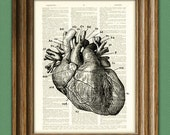 It's a HUMAN HEART diagram beautifully upcycled dictionary page book art print