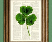 Green Shamrock St. Patrick's Day clover botanical illustration beautifully upcycled dictionary page book art print