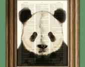 Panda Bear Art Print beautifully upcycled vintage dictionary page book art print