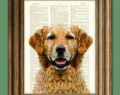 Golden Retriever dog beautifully upcycled vintage dictionary page book art print