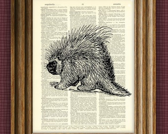 Cool PORCUPINE beautifully upcycled vintage dictionary page book art print 8.5 x 11