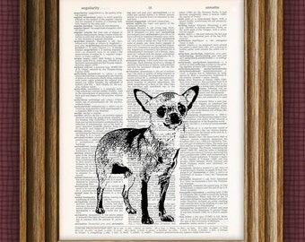 chihuahua dog beautifully upcycled vintage dictionary page book art print 8.5 x 11