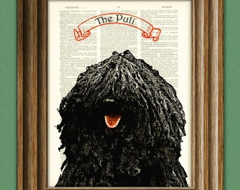 Hungarian PULI dog beautifully upcycled vintage dictionary page book art print PERSONALIZED