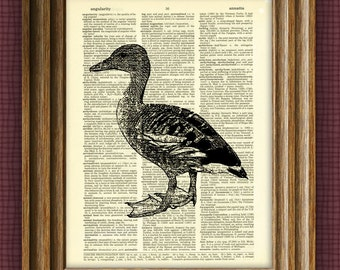 DUCK art print beautifully upcycled vintage dictionary page book art print