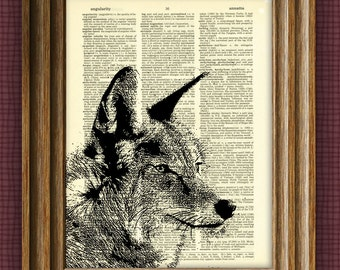 cool COYOTE illustration beautifully upcycled dictionary page book art print altered