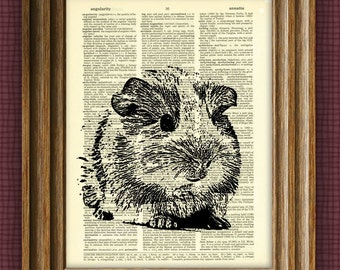 GUINEA PIG Art Print Cavy beautifully upcycled vintage dictionary page book art print altered