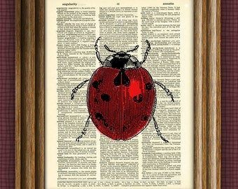 LADYBUG bug illustration beautifully upcycled dictionary page book art print