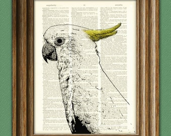 COCKATOO bird print beautifully upcycled vintage dictionary page book art print