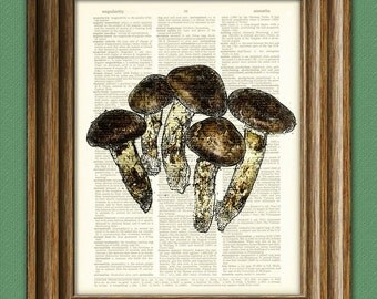 Rustic MUSHROOMS beautifully upcycled dictionary page book art print
