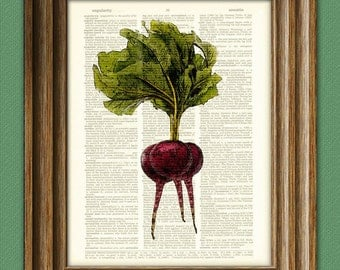 Purple BEETS beautifully upcycled dictionary page book art print