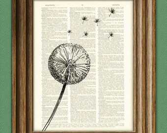 Dandelion flower parachute seed in the wind botanical illustration beautifully upcycled dictionary page book art print