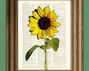 Sunflower art print botanical illustration beautifully upcycled dictionary page book art print